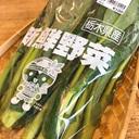 野菜と漫画と時々旅と東京駅攻略