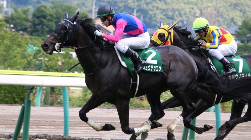 【ラジオNIKKEI賞2019】データ分析と予想|菊花賞出走に名乗りを上げる馬は?