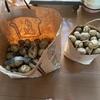 【シェアリング】ジャガイモ大収穫!種類も色々!