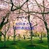 2019年4月の材料まとめ~暗号資産投資~