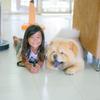 プーケット人8歳、未来の番犬番長は8ヶ月です。