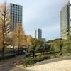 矢倉沢往還・青山通り大山道を歩く その1 赤坂御門から二子の渡し