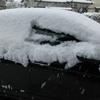 今日も雪!!!!