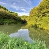 蝋木池(石川県羽咋)