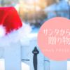 私が20年間の間サンタさんからもらったプレゼント【クリスマス】