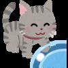 猫は日本語ではニャーだけど、英語では?色々な動物の鳴き方を表現してみよう!