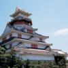 ☆お城 & 北海道 🦀 絶景 & 野鳥🐤 & 猫