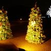 【kogasanaの写真素材集】仲良しクリスマスツリー♪
