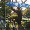 国立 天下市に行ってきました〜(≧∇≦)!