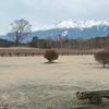雪景色の御嶽山(御岳山)・2021年3月25日