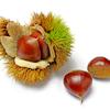 秋の味覚を使ったローソンの新発売スイーツ。コーヒーブレイクに「秋の実り」をいかがですか?