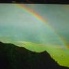 8月29日 虹が見えた?