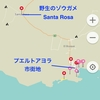 エクアドル編 Galapagos Isla Santa Cruz編(3)野生のゾウガメツアー