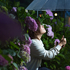 紫陽花と花しょうぶが咲いてる園内で初めての雨ポートレート!ストロボ直当てライティング【愛知県豊橋市】
