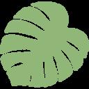風水× 観葉植物のすすめ