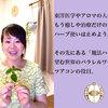 薬草魔女の気血水レッスン☆〜入ってきたメッセージ〜