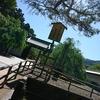 神社・仏閣マラニック!初夏の陣!近江の巻