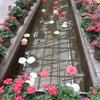松江フォーゲルパーク(3):島根県松江市