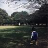公園に集う保育園児を眺めて、おもうこと。