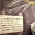 【新型コロナウイルス変異株流行国より子連れ帰国レポート】着陸〜ホテル移動まで