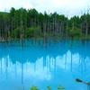 北海道、美瑛にある「青い池」はとても神秘的で美しい。