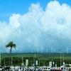 一枚の写真から・・・風車がいっぱい!