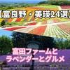 【富良野・美瑛おすすめ観光スポット24選】富田ファームとラベンダーとグルメ
