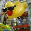 コストコ 夏の風物詩 巨大ビニールプールに心も踊る! コスパが良い帽子Sun Protection Zoneのご紹介🌟🌟🌟