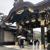 雨降る中、京都の二条城へ行ってきました