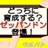 【ウルバト】2つのパワーで戦え‼ゼッパンドン♪(ウルバトお知らせ5/5)