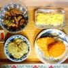 チキン、コロッケ、ヤーコン天、茄子ピーマン、玉子焼き