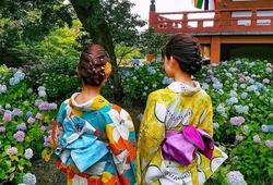 花を見に行くならココ!京都をよく知るインスタグラマーおすすめスポット