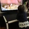 1歳3ヶ月 娘のテレビ事情