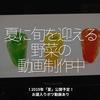 479食目「夏に旬を迎える野菜の動画制作中」!2019年「夏」公開予定!お蔵入りボツ動画あり