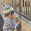 1歳のどんぐり帽子第二弾。セリアの毛糸でボーダーに挑戦