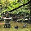 【名古屋】豊国神社のある中村公園の池に亀がいた