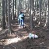 登り納め ⛰「経ヶ峰」