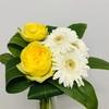簡単にお洒落な花を活ける事が出来る小技!ドラセナを使ってみよう!