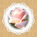 HAPPINESS✿笑顔の花を咲かせたい