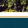 display: inline-blockで出来ることがある上下の隙間への対処