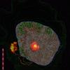 H290715ランドサット8の捉えた夜の西之島
