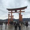 広島・厳島神社でも運試し☆ヨーロッパをバスで移動中