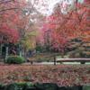 三重と滋賀で秋を満喫