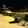 船釣り (対馬)