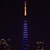 「ほぼライブ」 - 「ニューヨーク市&東京都観光パートナーシップ記念」特別ライトアップ