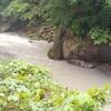 水窪川の渓流釣り 梅雨シーズン