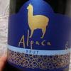 【安うまワイン】アルパカは私を裏切らない~サンタ・ヘレナ・アルパカ スパークリング