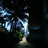 8年ぶりのクラビ旅行、今回はピピ島に来ました。でも大雨です。