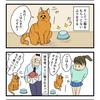 第21話 猫漫画 ご飯まだですか?