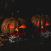 高齢者介護施設にハロウィンは要らない・秋は一年で一番美しい季節
